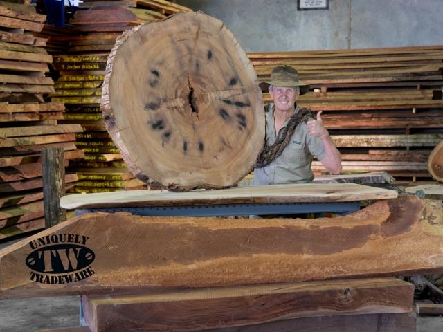Timber Slabs - image 1-Camphor-Laurel-with-Mitch-OMara-2-640x480_c on http://tradewarebuildingsupplies.com