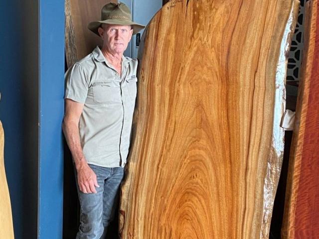 Timber Slabs - image Camphor-Laurel-1900-long-x-approx-900-wide-768x1024-640x480_c on https://tradewarebuildingsupplies.com