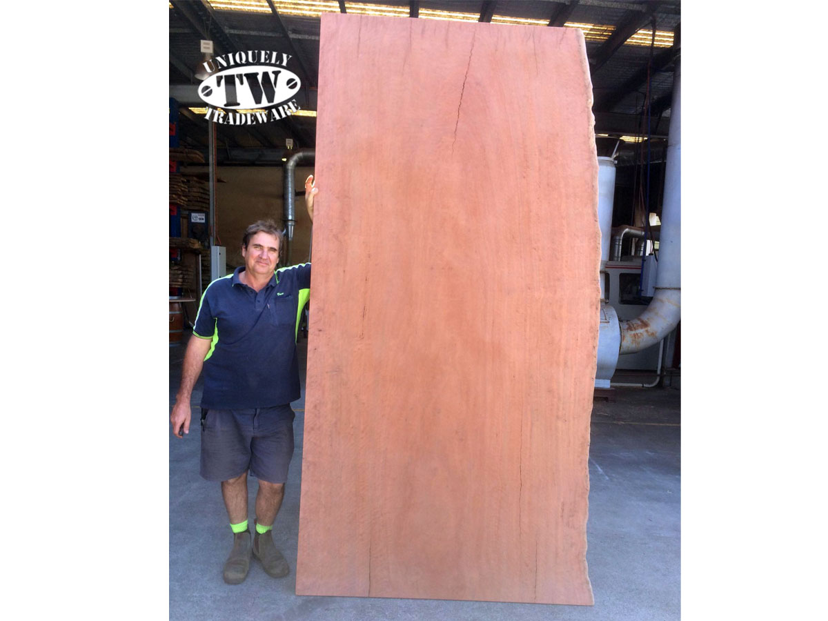 Bluegum Slab measuring 3.0m x 1.1m x 40mm thick available from Tradeware Building Supplies, Chandler, Brisbane